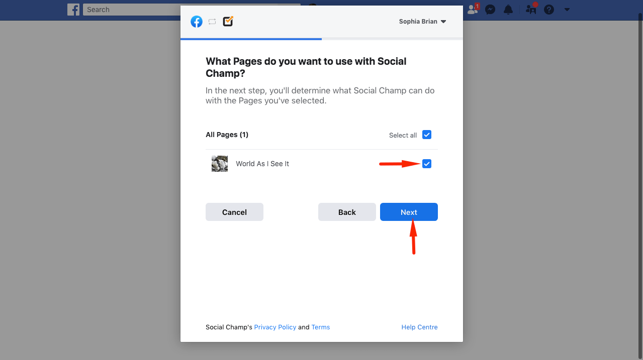 selecting pages to connect with social-champ