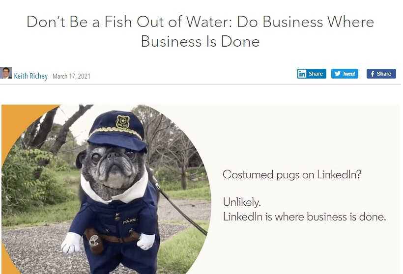 A costumed pug on a campaign banne